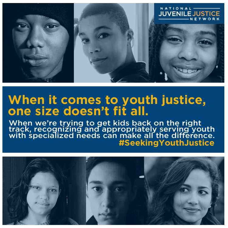 the juvenile justice system The juvenile justice system and the adult justice system share their commonalities and differences for example, the juvenile justice system makes it the point to rehabilitate instead of to punish juvenile delinquents.